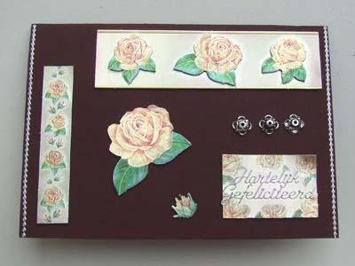 Dufex rozen 4