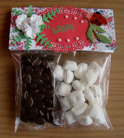 Zakje chocolade/mint 1