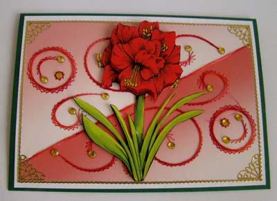 Borduur met amaryllis rood