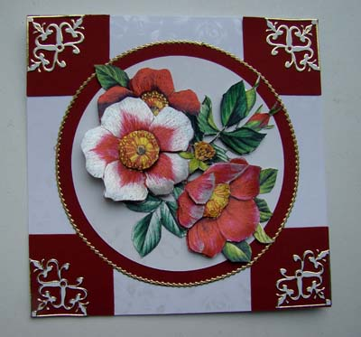 Dufex rozen rood en witte kaart