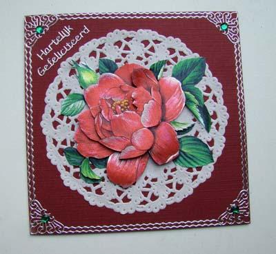 Dufex roos met taartrandje