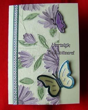 Vlinders met stof 3