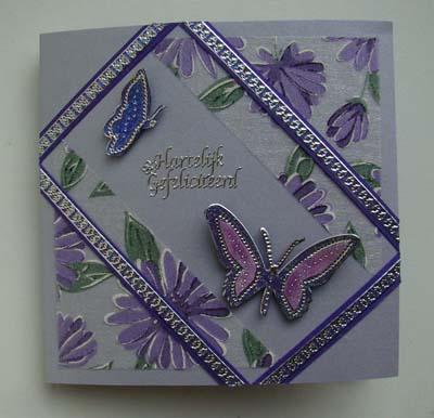 Vlinders met stof 11