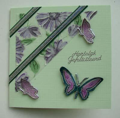 Vlinders met stof 12