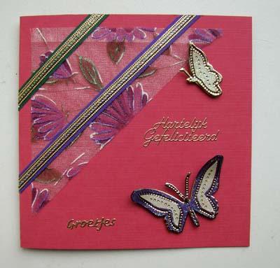 Vlinders met stof 13