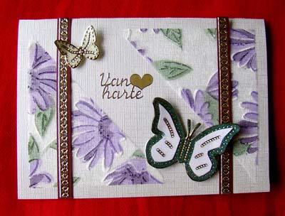 Vlinders met stof 15