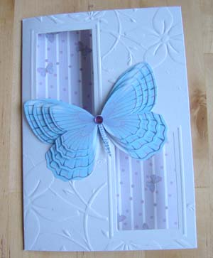 Vlinderkaart 2