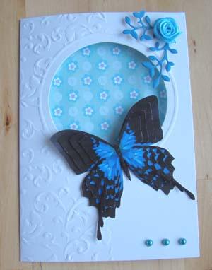 Vlinderkaart 3