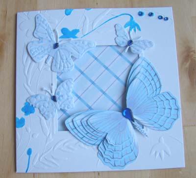 Vlinderkaart 4