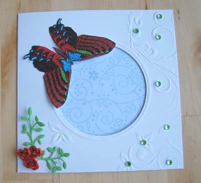 Vlinderkaart 5