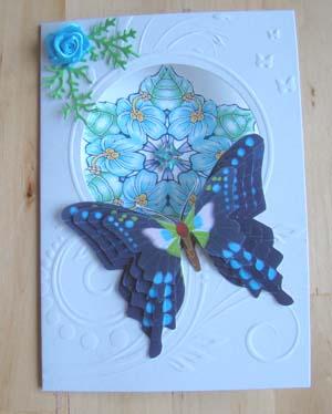 Vlinderkaart 6